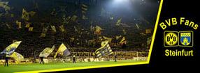 Kicktipp-Spiel | BVB Fans Steinfurt e.V.