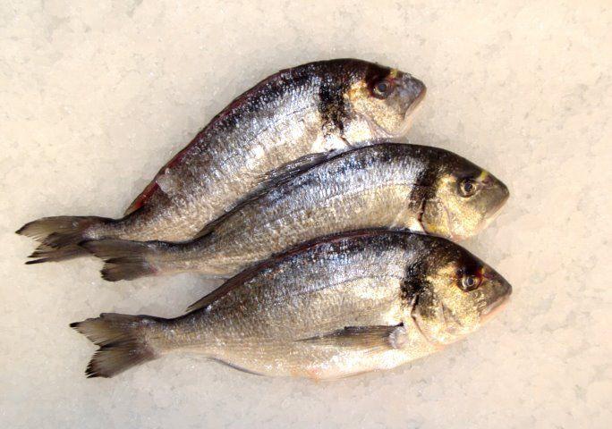 Unser Sortiment   Fischräucherei Gottschalk