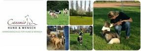 Willkommen! | Canemio - Harmonieschule für Hund & Mensch