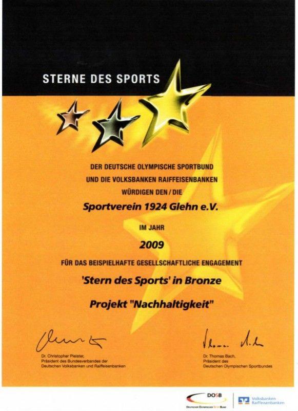 Sterne des Sports und Ehrenamtspreise -