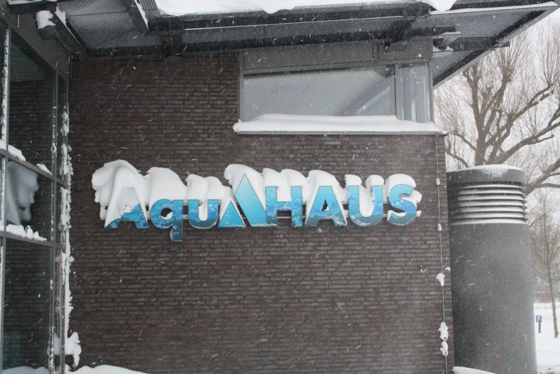 Aktuell | AquAHAUS