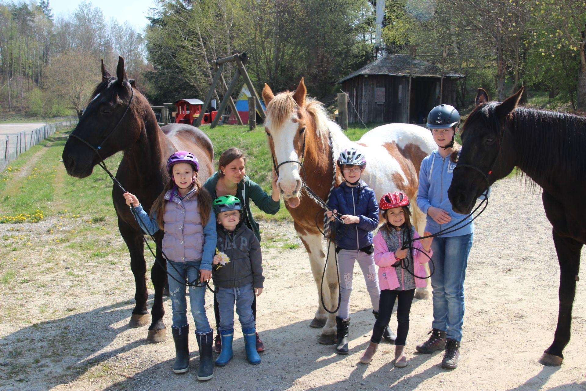 Pferde-Erlebnistage für Kinder - Ferien-Erlebnisse