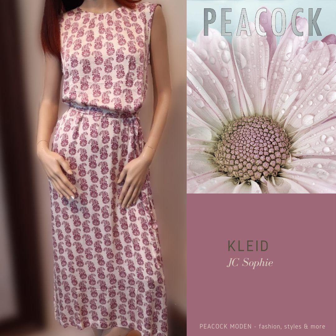 Aktuelle Neuigkeiten | Peacock Moden