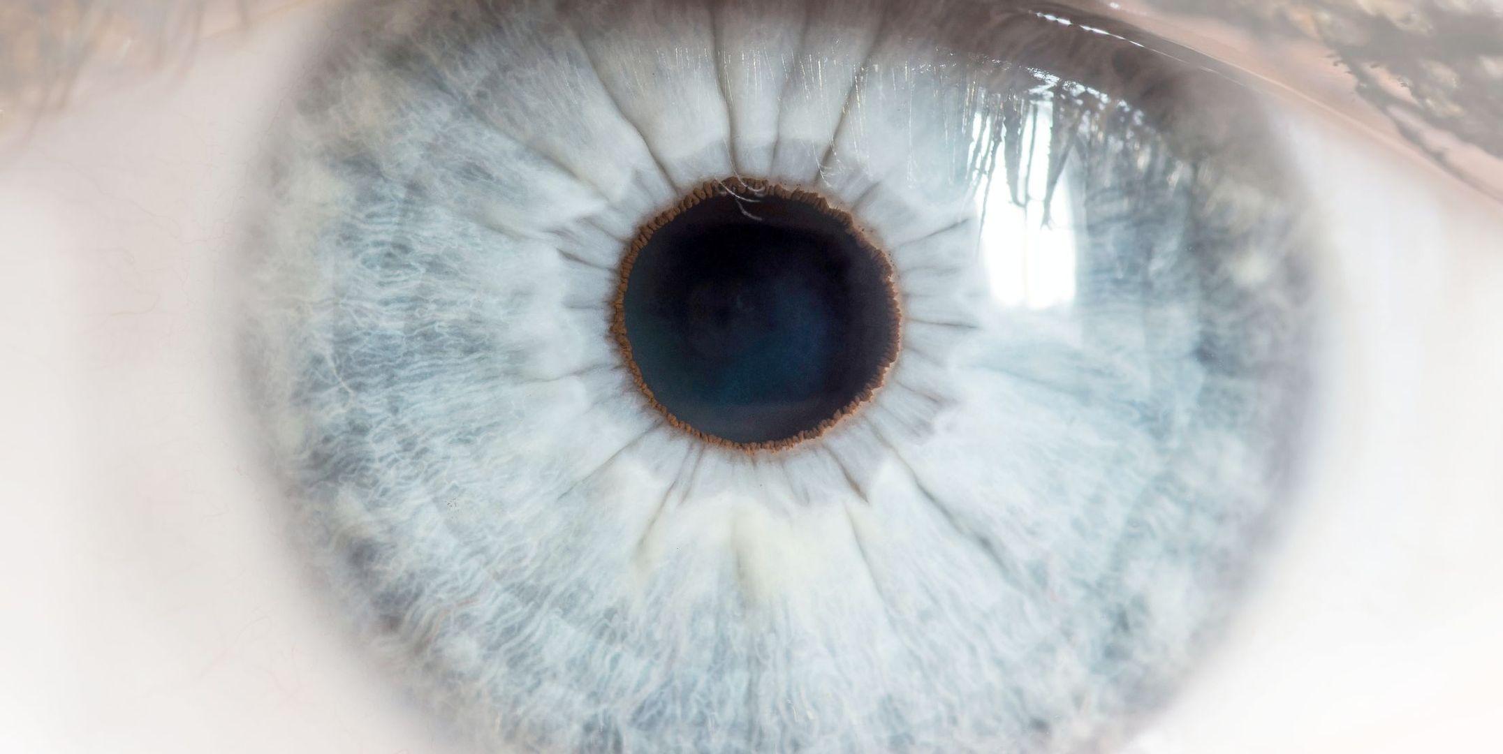 Optometrie | Meier Optik Ingolstadt