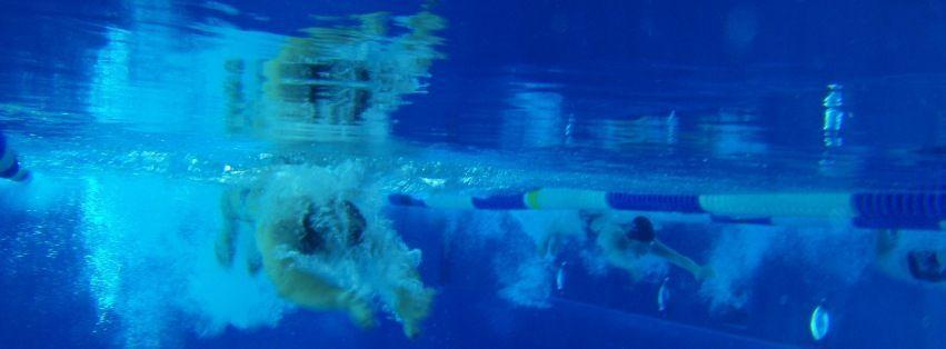 Herzlich Willkommen beim Verein für Schwimmsport