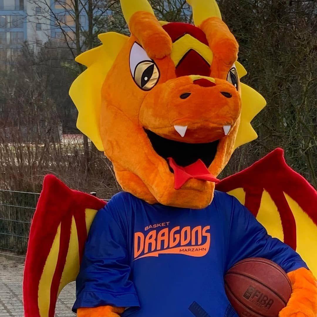 Aktuelle Neuigkeiten | Basket Dragons Marzahn e.V.