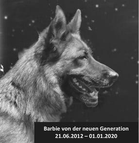 """Zuchtstätte für Deutsche Schäferhunde """"von der neuen Generation"""""""