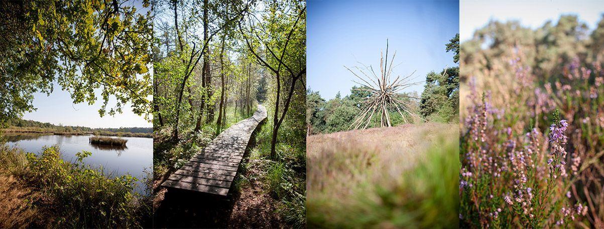 Sehenswerte Naturschutzgebiete | ahaus.app