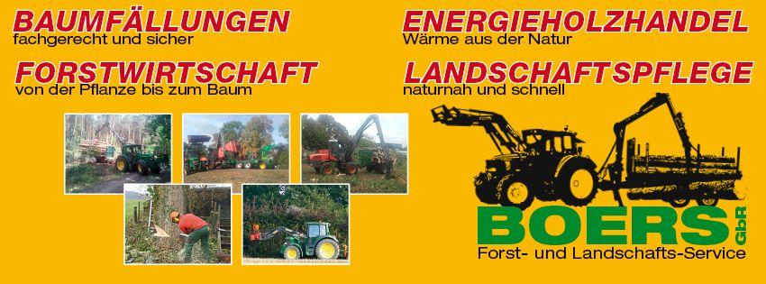 Pflanzung von Forstpflanzen - Pflanzarbeiten