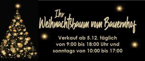 Weihnachtsbaum live | Hof-Kolkmeier