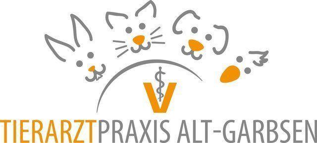 Tierarztpraxis | Hundeschule entspannter Hund