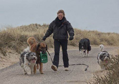 Das Team des Sylter Hundeshop......
