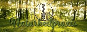 Diagnose | Naturheilpraxis-Enskat