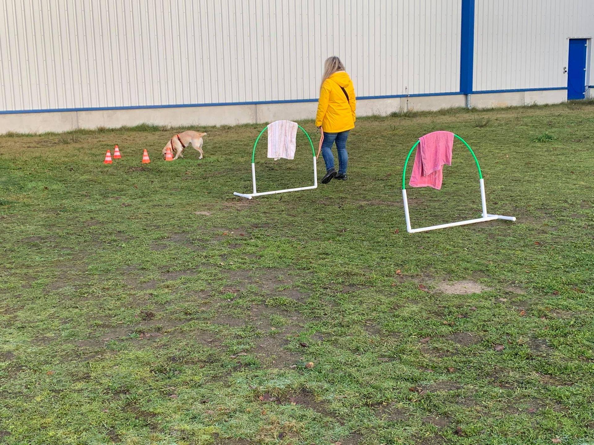 Hundeausbildungszentrum Emsland HAZE in Bildern