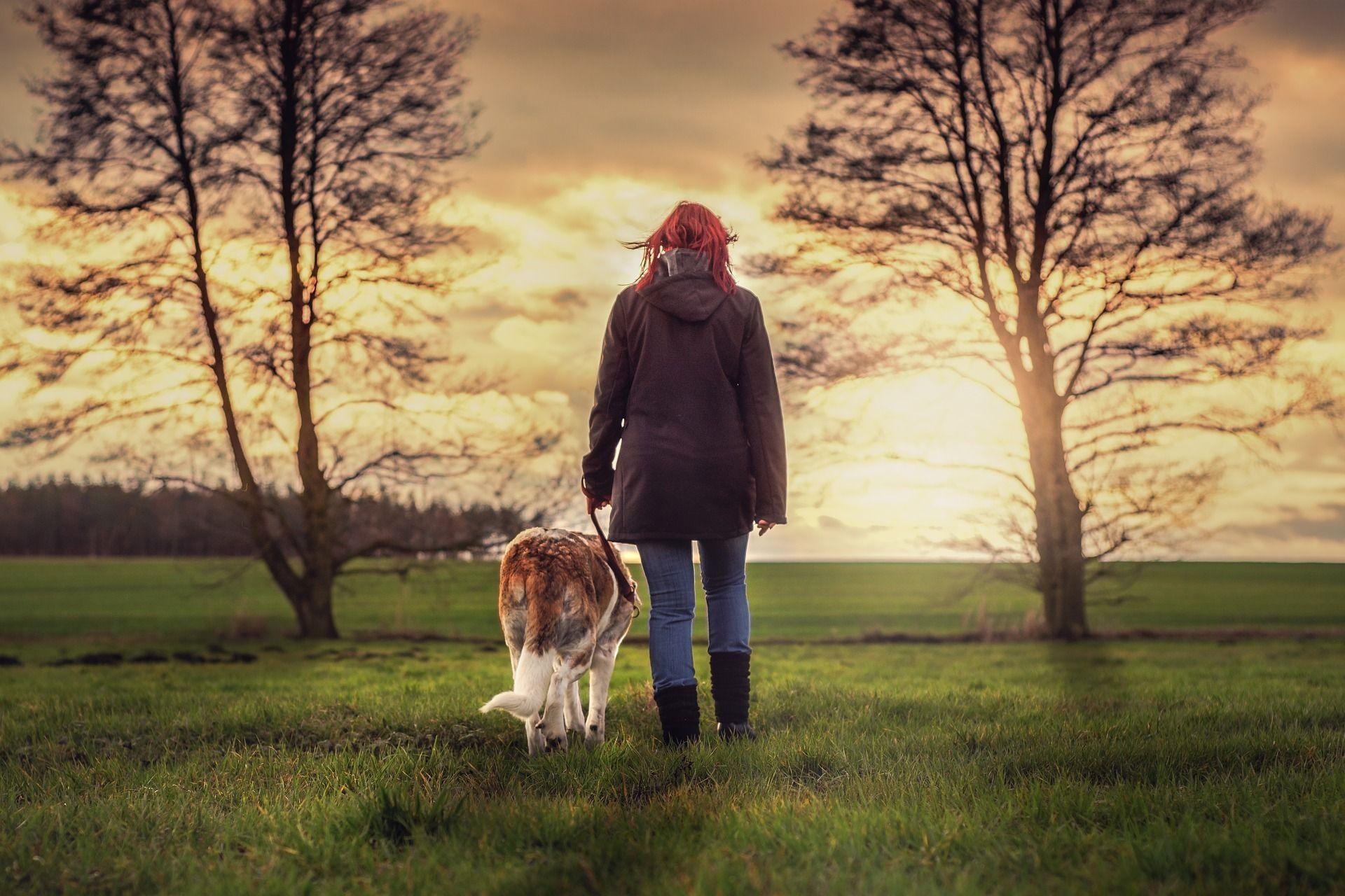 Coaching für Menschen mit Hund