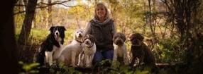 Hundeführerschein | Hundeausbildungszentrum Emsland HAZE