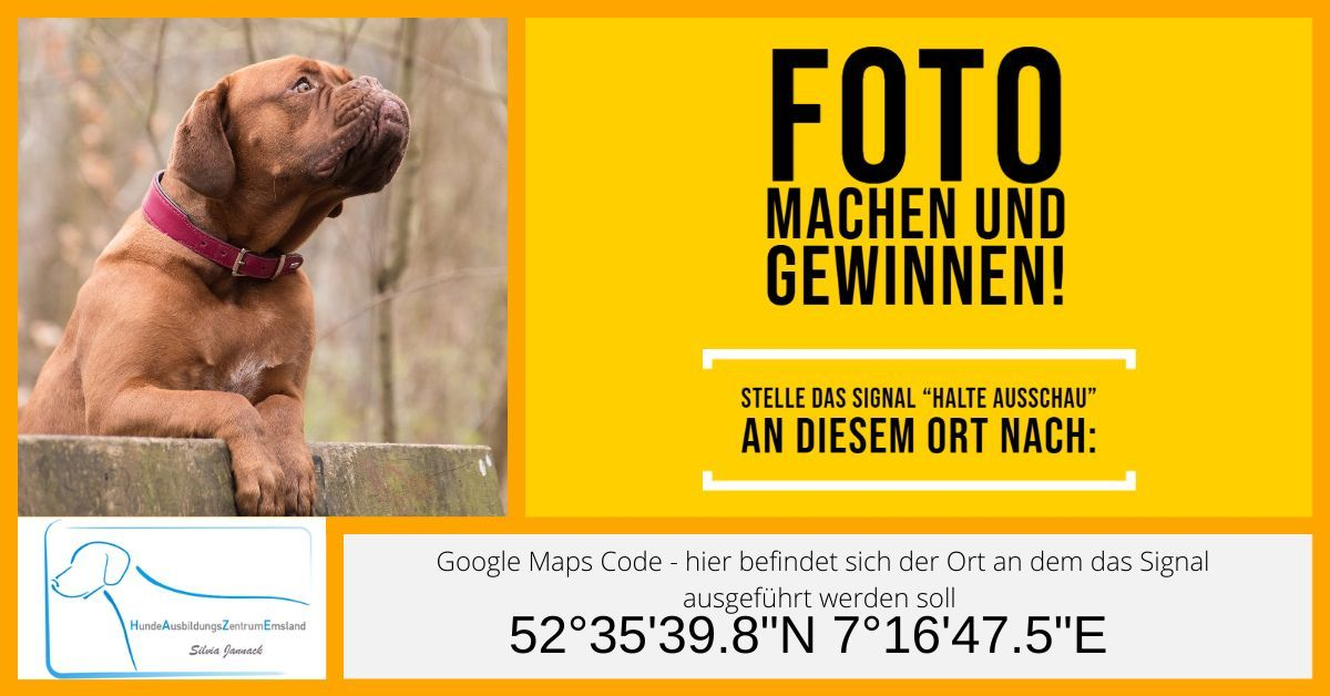 Geo - Advents - Fotoaktion Trainingstipps