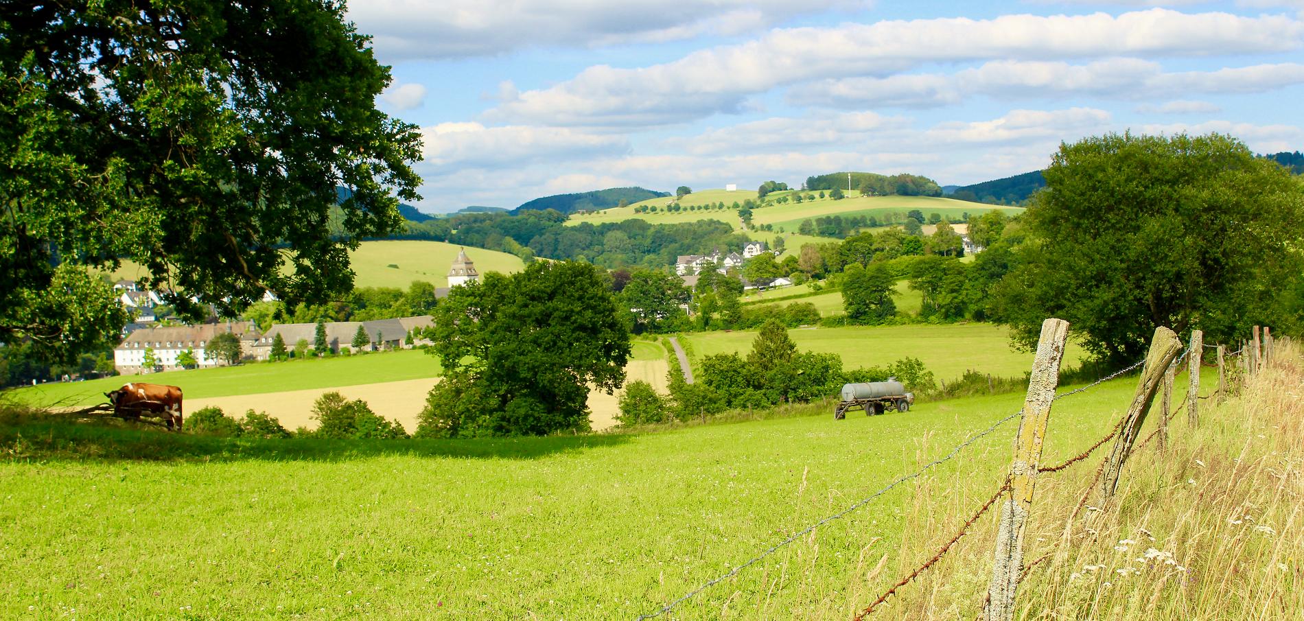 Heimat- und Förderverein Grafschaft/Schanze e. V.