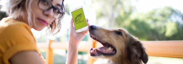 Unsere App | Dog's Sportcenter by Kai Dahlhaus