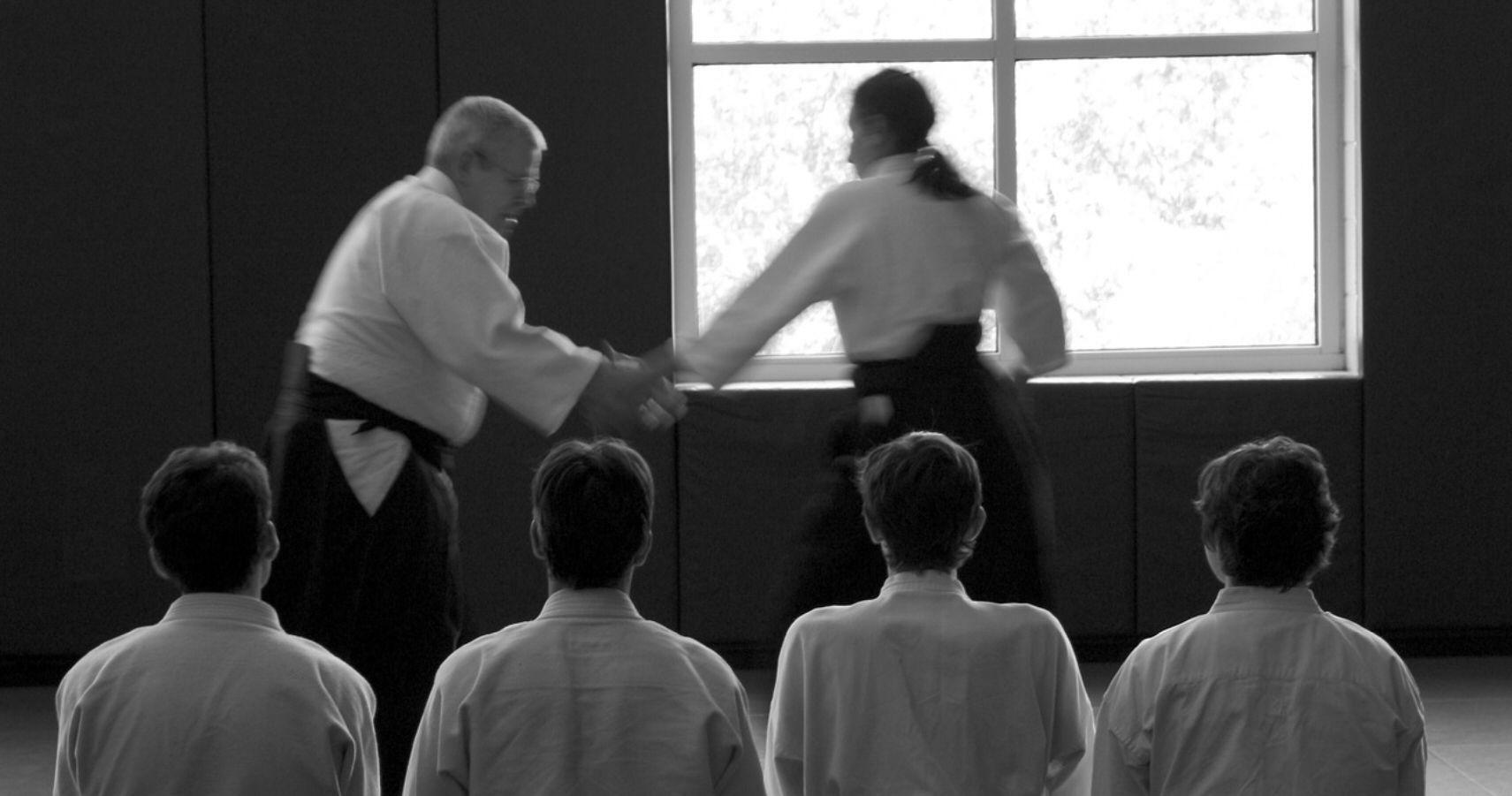 Aikido für Erwachsene in Melle | budokai-melle