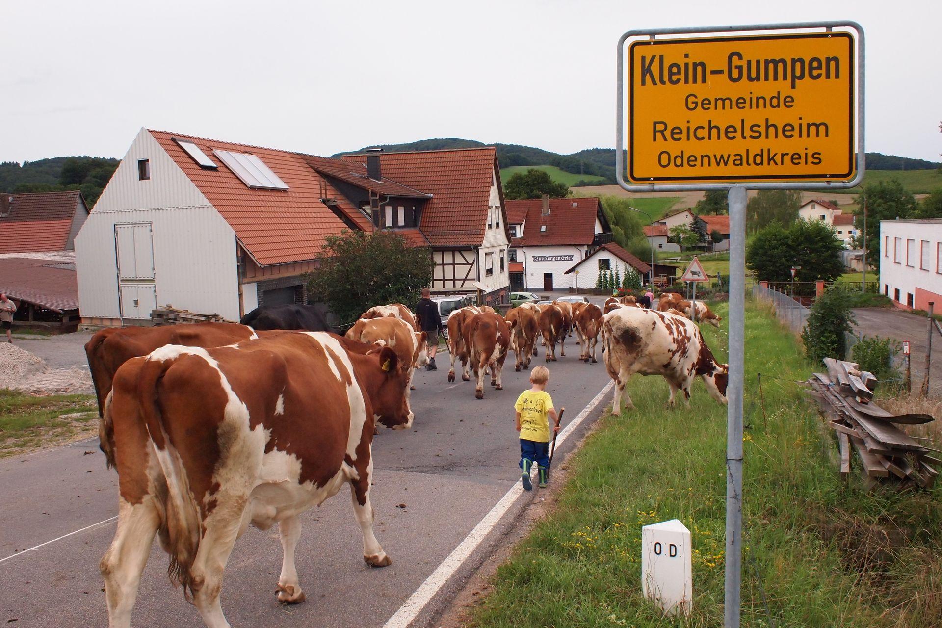 Ort & Region   Ferienhof Dingeldey