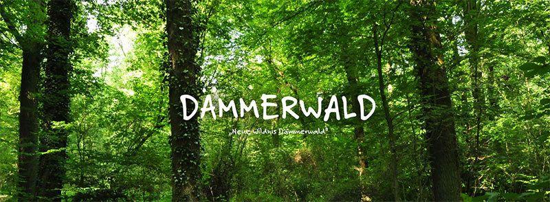 Neue Wildnis Dämmerwald | Schermbeck App