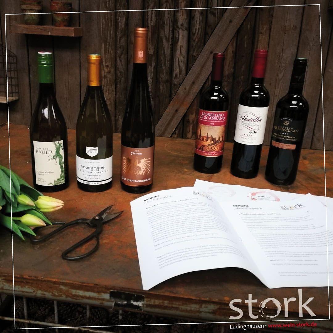 Neuigkeiten   Wein Stork