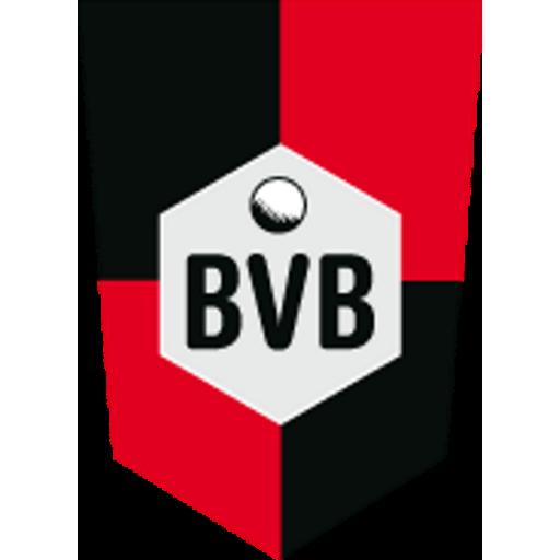 SV BVB 49 e.V.
