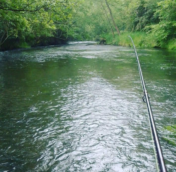 Fischereischein-Lehrgang