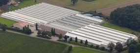 Impressum | Kloer-Gartenbau