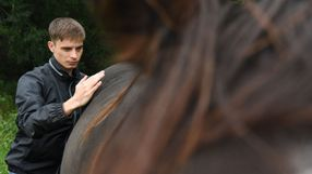 Anmelden | Pferdeosteopathie-Starnbergersee