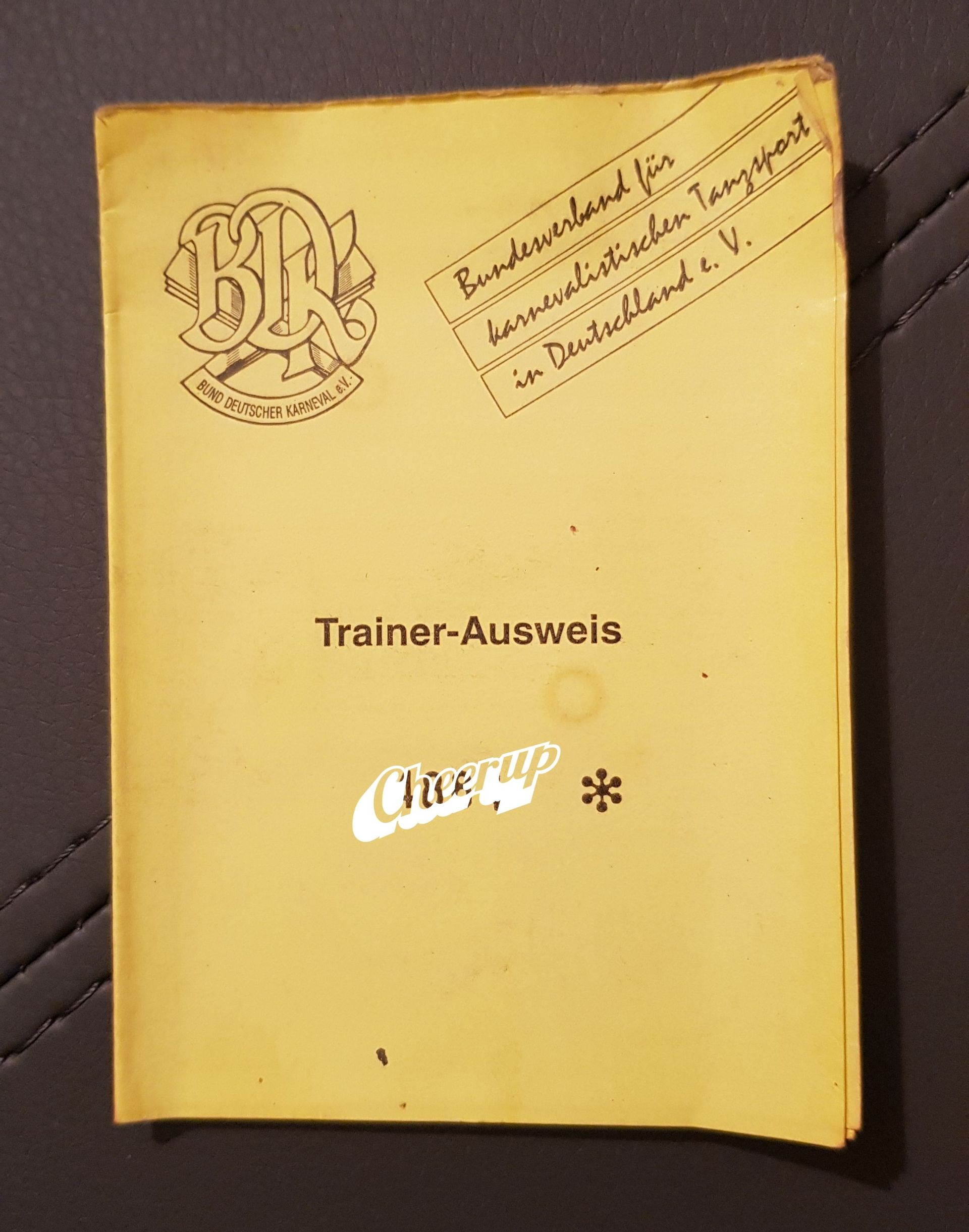 Gruppenleiter/Trainerinnen -