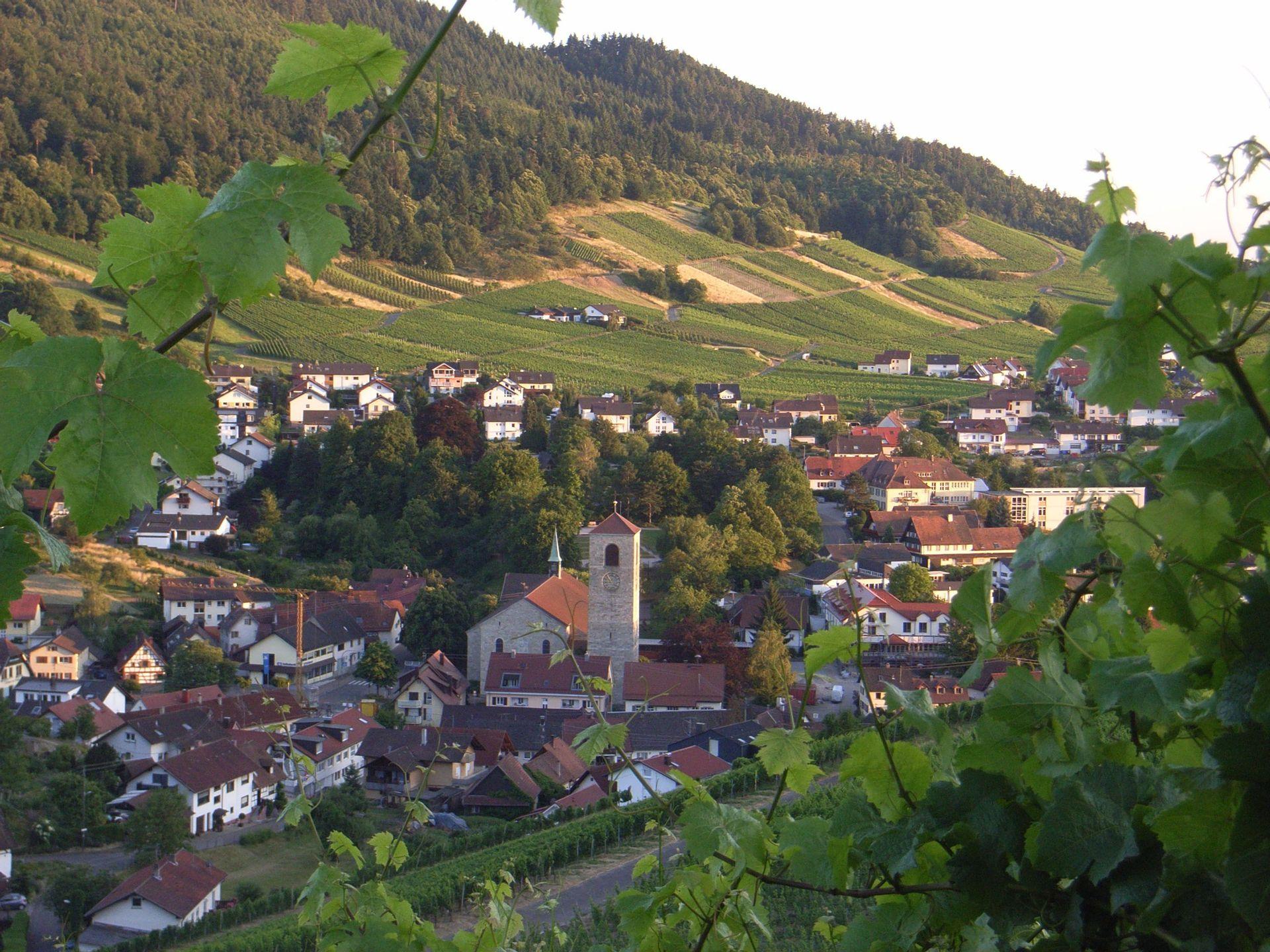 Orts - Geschichte des Baden-Badener Reblandes -