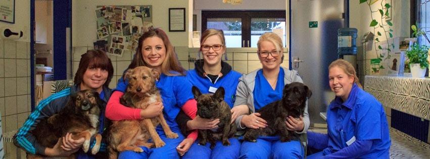 Anmelden | Dr. Killing Tierarzt